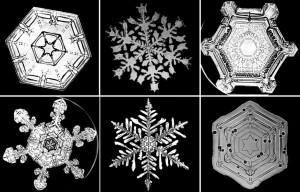 the many lessons of snowflake bentley yadkin valley community school